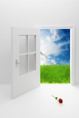 8679672_s.jpg door