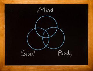 12336690_s.jpg mind soul body